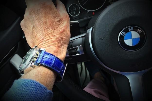 panerai sur bracelet montre alligator vanuatu