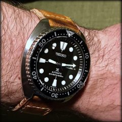 seiko turtle strap old cudjoe key